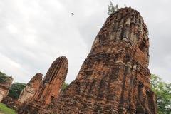 Wat Maha That, Ayutthaya, Tailândia Imagens de Stock