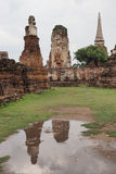 Wat Maha That, Ayutthaya, Thailand. Ruined pagodas and the reflection at Wat Maha That (Temple of the Great Relics), a Buddhist temple in Ayutthaya, Thailand Royalty Free Stock Photos