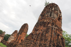 Wat Maha That, Ayutthaya, Thailand. The ruins of Wat Maha That (Temple of the Great Relics), a Buddhist temple in Ayutthaya, Thailand stock images