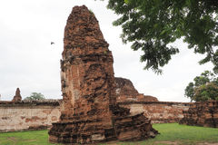 Wat Maha That, Ayutthaya, Thailand. The ruins of Wat Maha That (Temple of the Great Relics), a Buddhist temple in Ayutthaya, Thailand stock photos