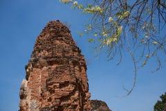 Wat Mahatat в Ayutthaya, Таиланде Стоковые Изображения RF