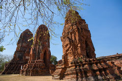 Wat Mahatat в Ayutthaya, Таиланде Стоковая Фотография