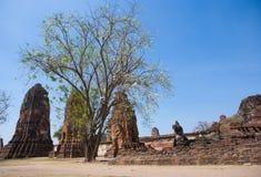Wat Mahatat в Ayutthaya, Таиланде Стоковые Изображения