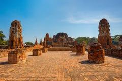 Wat Mahathat寺庙在Ayuthaya历史公园,泰国 库存照片