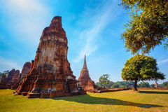 Wat Mahathat寺庙在Ayuthaya历史公园,泰国 免版税库存图片