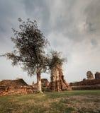 Wat Mahathat寺庙废墟, Ayuthaya,泰国 免版税库存照片