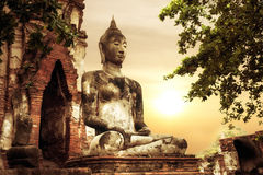 Wat Mahathat废墟的菩萨在日落天空 ayutthaya泰国 免版税库存照片