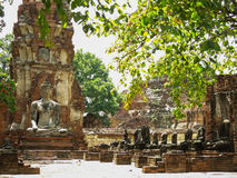 Wat Mahathat, Ayutthaya,泰国 免版税库存图片