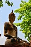 Den historiska Ayutthayaen parkerar. (Buhhda) Arkivfoton