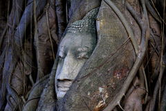 Wat Mahathat lizenzfreie stockfotos