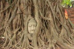 Wat Mahathat Arkivfoto