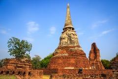 Wat Mahathat in Ayutthaya Stock Afbeeldingen