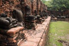 Wat Mahathat Ayutthaya A arte e a cultura Siamese antigas foto de stock royalty free
