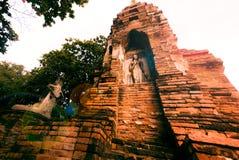 Wat Mahathat, Ayutthaya, Tailandia fotografia stock libera da diritti