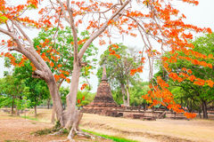 Wat Mahathat en parc historique de Sukhothai Images libres de droits
