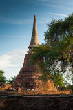 Wat Mahathat. Is one temple in Ayutthaya historical park.  temple is of great importance in the Ayutthaya period Royalty Free Stock Image
