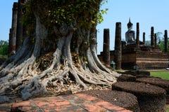 Wat Mahathat Sukhothai Historical Park Royalty Free Stock Photo