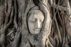 Wat Mahathat (Tempel van de Grote Overblijfselen) Royalty-vrije Stock Afbeelding