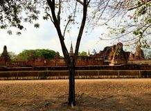 WAT MAHATHAT TEMPLE. temple containing Buddha relics. Ayutthaya. stock photos