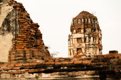 Wat Mahathat Temple Ruin, Ayuthaya, Tailandia Fotografia Stock