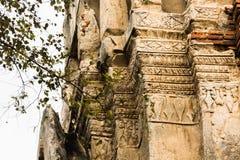 Wat Mahathat Temple Ruin Ayuthaya, Thailand Royaltyfri Foto