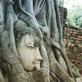 Wat Mahtathat, Ayuthaya, fotografia stock