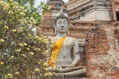 在Wat亚伊柴Mongkol寺庙的菩萨状态在曼谷,泰国附近的阿尤特拉利夫雷斯 图库摄影