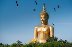 Wat muang ang thong. Big Buddha at Wat Muang Royalty Free Stock Photos