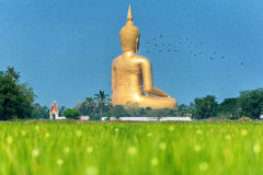 Wat muang Stock Photos