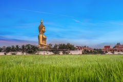 Wat Muang. With gilden giant big Buddha statue in Thailand Stock Photos