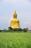 Wat Muang Royalty Free Stock Photos