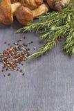 Wat paddestoelenboleet met specerij en rozemarijn stock fotografie
