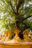 Wat Pha den Luang Vientiane Arkivfoton