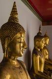Wat Pho Buddha Royalty Free Stock Image