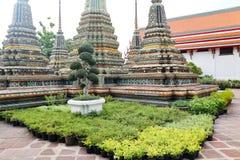 Wat Pho Temple av vilaBuddha eller Wat Phra Chetuphon, lokaliseras bak templet av Emerald Buddha, och a m?sta-g?r royaltyfri foto