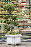 Wat Pho Temple at Thialand Royalty Free Stock Photos