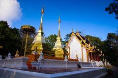 Wat Phra土井桐树,泰国 免版税库存图片