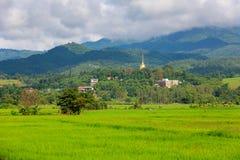 Wat Phra That Dhamma Ratana Chedi Fotografia Stock Libera da Diritti