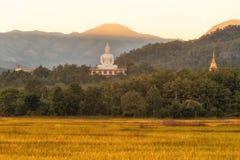 Wat Phra That Doi Lon av naturen, Tak Thailand Fotografering för Bildbyråer