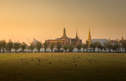 Wat phra kaeo. Many bird and background is Wat Phra Kaew ( the Temple of the Emerald Buddha) in morning. Here is destinations of landmarks traveler stock image