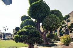 Wat Phra Kaew, powszechnie zna? w Angielskim jako ?wi?tynia Szmaragdowy Buddha uroczysty pa?ac lub dotyczy jak najwi?cej ?wi?tego obraz royalty free