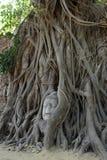 Wat Phra Mahathat, Ayutthaya Стоковая Фотография RF