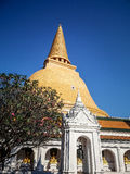 Wat Phra Pathom Chedi,最高的stupa在世界上,意想不到的佛教大厦在佛统 图库摄影