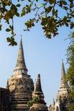 Wat Phra Si Sanphet Стоковое фото RF