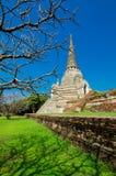 Wat Phra Si Sanphet, Ayutthaya Royaltyfri Bild