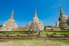 Wat Phra Si Sanphet, Ayutthaya Arkivbilder