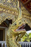 Wat Phra Singh Woramahaviharn. Buddhist temple in Chiang Mai, Thailand. Wat Phra Singh is perhaps the second most venerated temple in Chiang Mai after Wat Phra Stock Photography