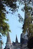 Wat Phra SiSanphet Ayuthaya, Ταϊλάνδη Στοκ φωτογραφίες με δικαίωμα ελεύθερης χρήσης