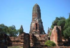 Wat Phra SiSanphet. Ayuthaya Stock Images