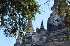 Wat Phra SiSanphet Ayuthaya, Tajlandia zdjęcia stock